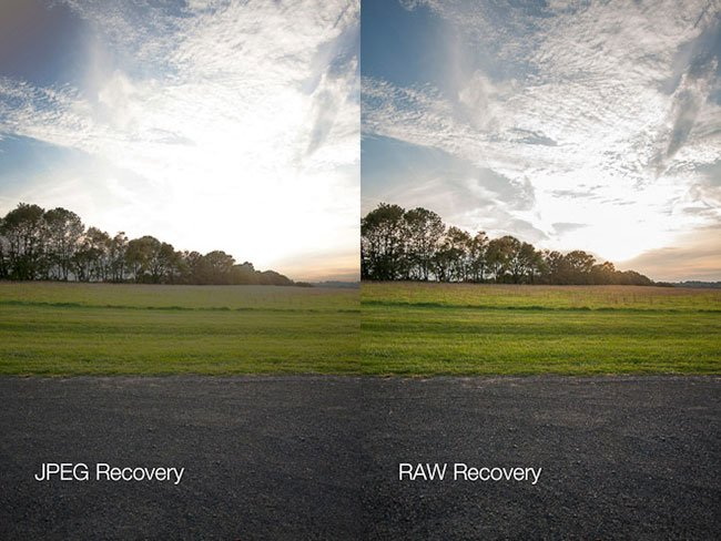 JPEG vs. RAW Image