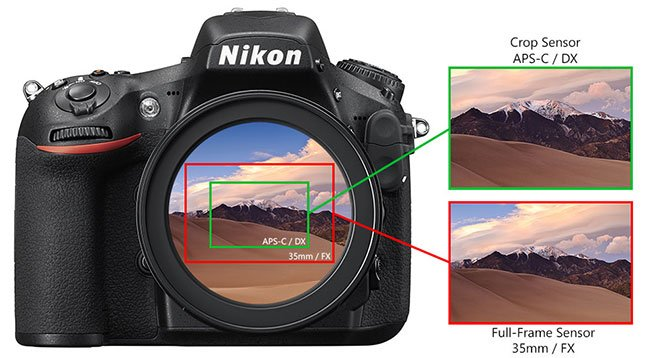 Nikon FX and DX Sensor Comparison