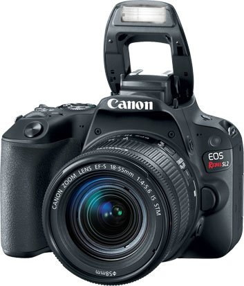 Canon EOS Rebel SL2 Flash